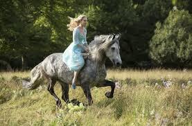 cinder riding